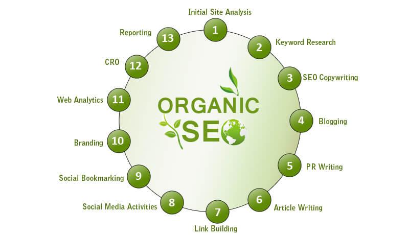 Perform Organic SEO   SLN-Solutions